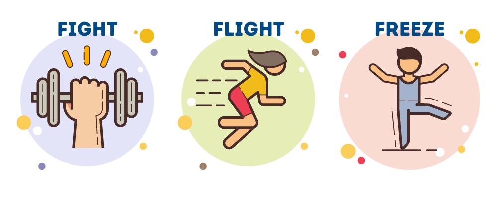fight flight freeze stress response
